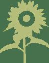 La Sassicaia Agriturismo